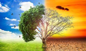 Global Warming,