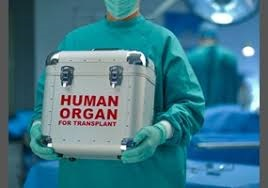 Trade of human organs